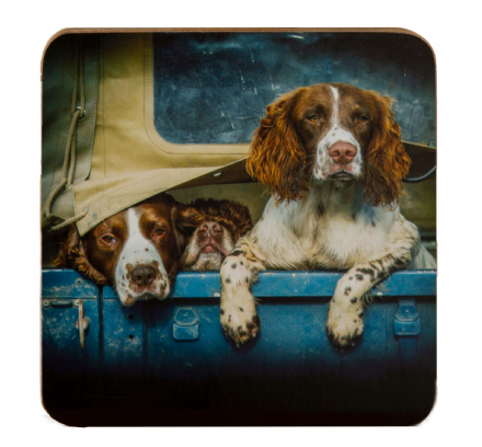 Spaniels in Landy Coaster